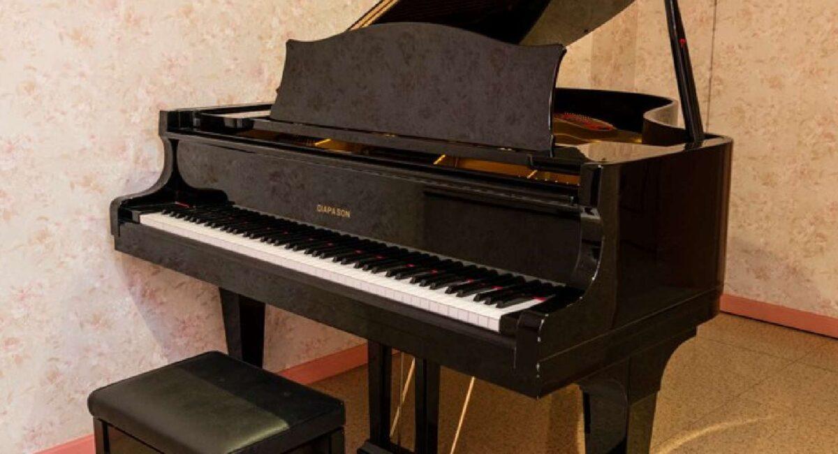 Hotel Pao(ホテルパオ) 一般 客室 201号室 グランドピアノ